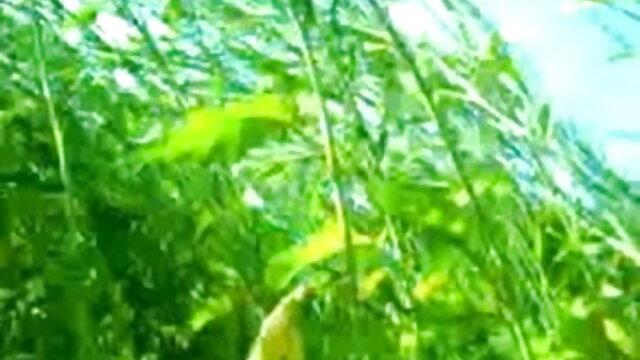 পালঙ্ক উপর দুই বলছি বোনা কভার xxx videos বাংলা ঝুঁকি সঙ্গে তরুণ হারপিস