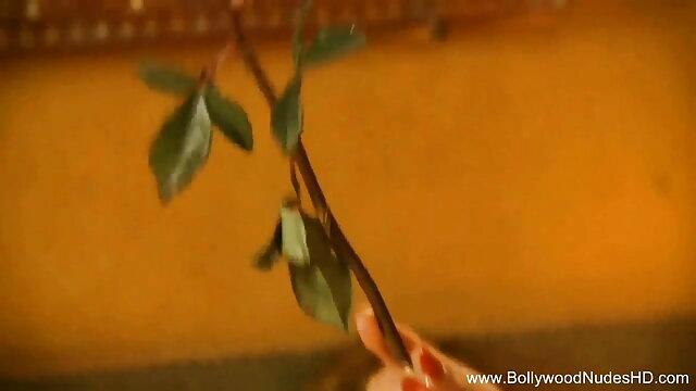 মাই এর, সুন্দরি সেক্সি xnx বাংলা মহিলার, পরিণত