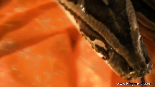 টেনেছেন রুমে দুই সুন্দরী আর ধর্ষণের শিকার মধ্যে ভিডিও বাংলা xxx
